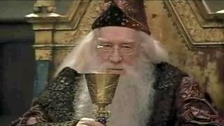 quidditchharry.gif